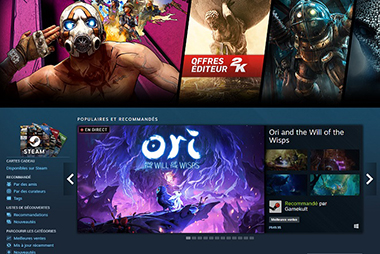 steam record joueurs
