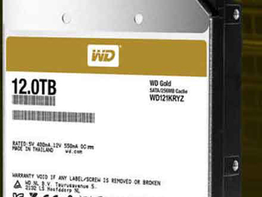 WD Gold 12To