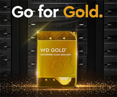 Western digital gold hard drives garanties 5 ans
